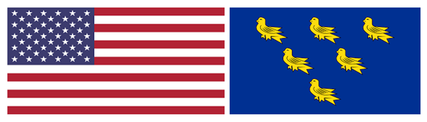 JOINT FLAGS