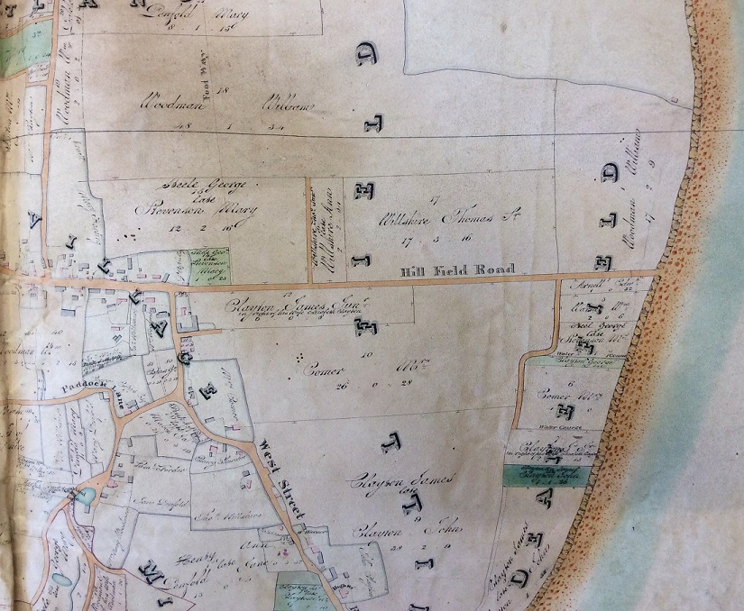 An excerpt of an inclosure map of Selsey, with Hillfield Road running through the centre straight to sea.