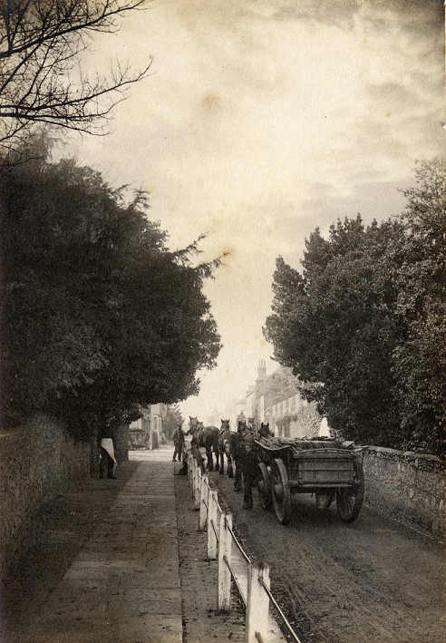 Sepia image of a team of four horses pulling cart up a narrow street. There are houses visible in background.
