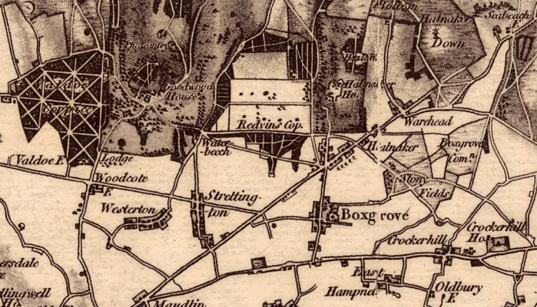 Image shows closeup of the Boxgrove area, including Halnaker and Goodwood House