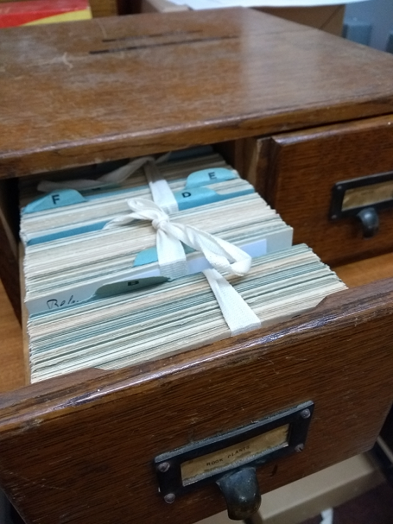 Pulled out wooden draw showing index cards arranged alphabetically and bound by white fabric tape.