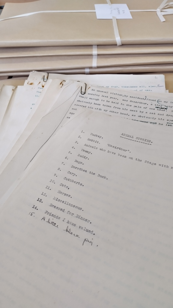 A stack of papers taken from Nancy's collection of folders on various topics